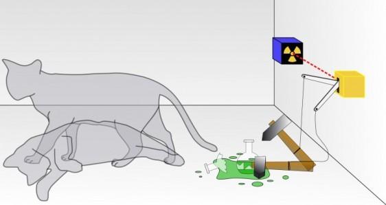 Schroedinger_Cat